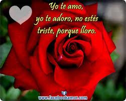 bonitas de rosas rojas con frases de amor imagenes de amor facebook tarjetas de amor con rosas rojas postales de rosas rojas para el