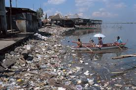 Cause effect essay about water pollution StephanieRobicheau com