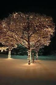 best led lights for outdoor trees best led lights for outdoor trees making spirits bright outdoor