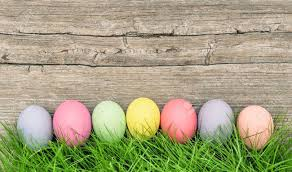 pastel easter eggs pastel colored easter eggs decoration in green grass on rustic