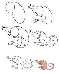 a drawing of a monkey drawing of a monkey how to draw monkey