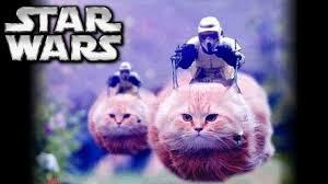 Star Wars Cat Meme - star wars memes and fails monday memeday 9 youtube