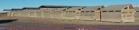 Calf Hutches For Sale 26 Wood Calf Hutches Item J8319 Sold February 19 Blis