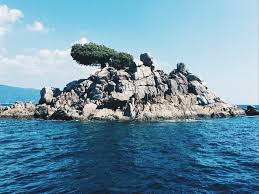 chinese kitchen rock island hype luxury yacht a phuket party boat karla around the world