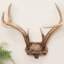 antler decor accessories from black forest decor