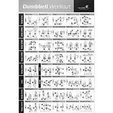 How Much Should I Bench Chart Amazon Com Dumbbell Exercise Poster Laminated Workout Strength