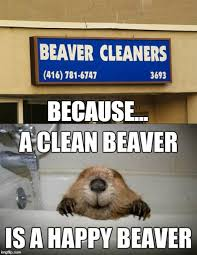 Funny Memes Clean - clean yours today please imgflip