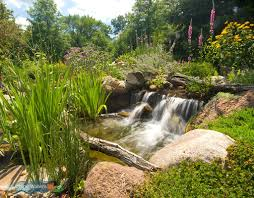 creating realistic backyard streams and waterfalls requires