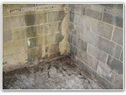 Basement Wall Waterproofing by Leaking Basement Wall
