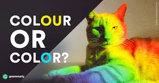 colour color colour or color which is correct grammarly