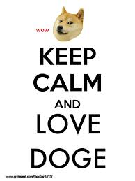 Doge Meme Pronunciation - 54 best doge wow images on pinterest funny stuff ha ha and doge meme