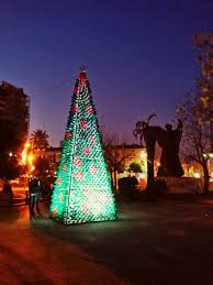 christmas tree made by citizens from 2200 recycled plastic bottles