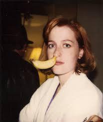 Recent Pics Of Vanity Gillian Anderson Home Facebook
