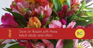 flower deals flower discount codes and offers best s day deals be