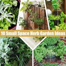 Small Herb Garden Ideas 10 Small Space Container And Herb Garden Ideas Diy Home Things