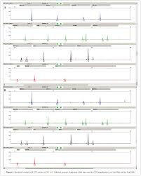 str profiling of human cell lines challenges and possible