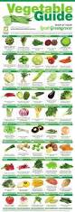 best 20 fruits and vegetables list ideas on pinterest u2014no signup