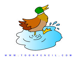 duck drawing for kids