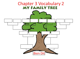 chapter 3 vocabulary 2 bien dit une famille a family info