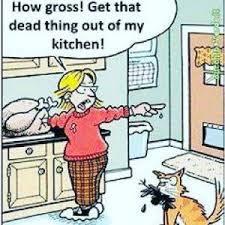 thanksgiving jokes kappit