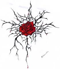 drawn red rose vine drawing pencil and in color drawn red rose