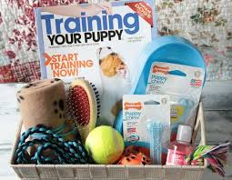 pet gift baskets best best 25 dog gift baskets ideas on themed gift