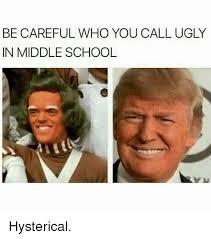 Hysterical Memes - be careful who you call ugly in middle school hysterical meme on me me
