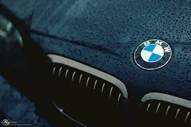bmw grill download wallpaper grill drops bmw logo free desktop wallpaper