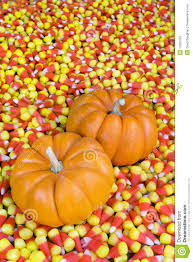 pumpkin candy corn mini pumpkins in candy corn stock image image of kernels