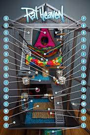 Best Bedding For Rats Rat Heaven 8587 Diagram Since People Have Asked Here U0027s U2026 Flickr