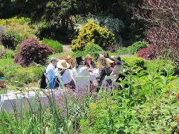 botanical gardens fort bragg ca festival of lights 27 best mendocino botanical gardens images on pinterest botanical
