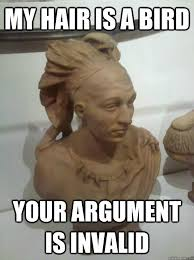 Your Argument Is Invalid Meme - my hair is a bird your argument is invalid my hair is a bird