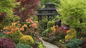Asian Garden Ideas Lawn Garden Cool Asian Garden Design With Colorful Flower