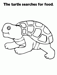 turtle cartoon pictures coloring
