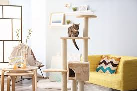 best cat tree reviews top 5 cat trees in dec 2017