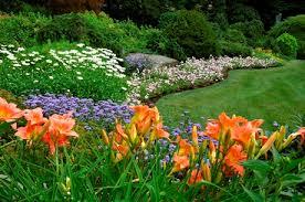 Gardening Zones - garden hardiness zone flowers for all gardening zones by troy bilt