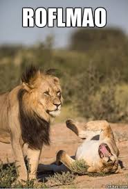 Lion King Meme Blank - lion king meme blank the best lion of 2018