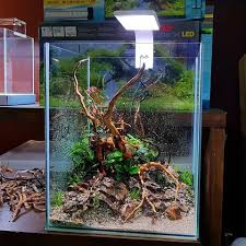 Aquascape Store Images Tagged With Aquaeden On Instagram