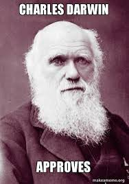 darwin theory of evolution by natural selection essay custom paper help