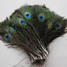 Discount Wedding Decorations Discount Wedding Decorations Peacock Feathers 2017 Peacock