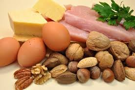 tasty high protein foods to add to your diet