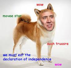 Doge Meme Tumblr - doge meme