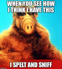 Alf Meme - alf the alien imgflip