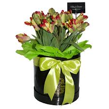 tulips in the box flower delivery black orchid lebanon flower shop