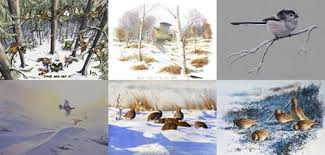 new christmas cards available to buy online game and wildlife