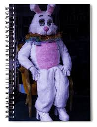 easter bunny costume easter bunny costume spiral notebook for sale by garry