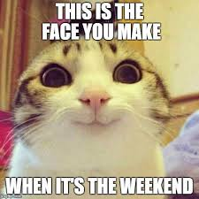 Happy Weekend Meme - david woodward on twitter this happy cat says it all we made
