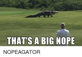 Nope Meme - that s a big nope made on nngur nope meme on me me