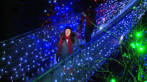 Twinkling Christmas Tree Lights Canada canyon lights at capilano suspension bridge north vancouver bc