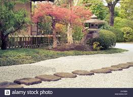 japanese zen garden with scenic stone pathway and red maple tree